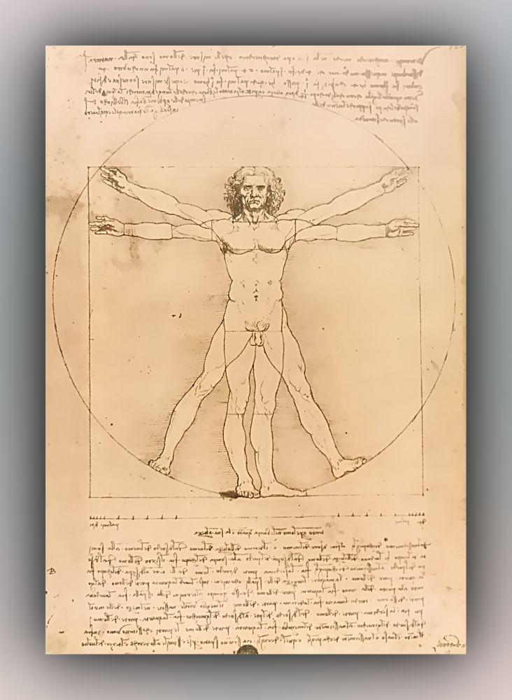Leonardo da Vinci - Leonardo: schema delle proporzioni del corpo umano da - Postkarte