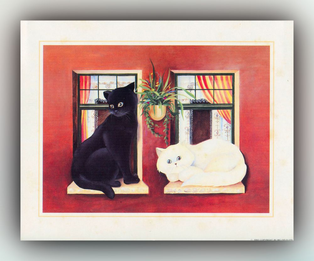 Schwarze und weiße Katze auf Fensterbank - Grafik